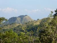 数十年前に伐採された山