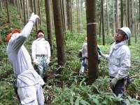 伐採する方向を定める