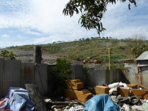 緑化中のゴミ山