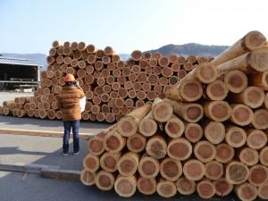 均等割りされた地元の杉材が並べられていた