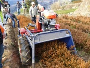根を掘り起こす特別なマシン