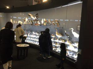 琵琶湖博物館にて